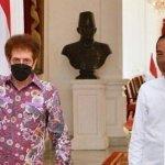 presiden jokowi dukung konser virtual 48 tahun god bless